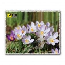 Килимок пластиковий, PODMYSHKU Весна-Крокусы, 240x190х2мм