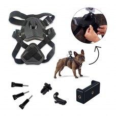 Набір кріплень AIRON ACS-3 на собак (для екшн-камер AIRON, GoPro, SONY, ACME, Xiaomi, SJCam, EKEN
